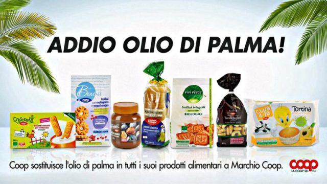 olio-di-palma1-768x432